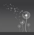 dandelion silhouette with flying dandelion buds vector image