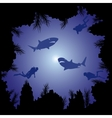 Sharks and scuba divers in the ocean vector image vector image