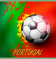 soccer ball on portuguese flag background vector image vector image