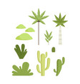 tropical and desert botanical plants set vector image vector image