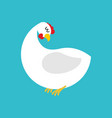 white hen isolated farm chicken bird on blue vector image vector image