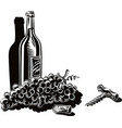 bottle of red wine just uncorked a bunch of ripe vector image