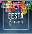 brazilian june party midsummer celebration vector image vector image