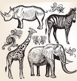 collection of savanna animals vector image vector image