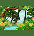 forest scene with trees and pond vector image vector image