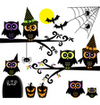Halloween Owls collections Happy Halloween element vector image vector image
