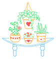 houseplant of a room vector image vector image
