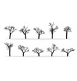 naked trees silhouettes set hand drawn isolated vector image vector image