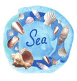 seachels on blue watercolor background vector image vector image