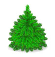 Furry Tree vector image