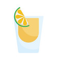 glass tequila and lemon slice mexico icon vector image