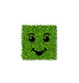 green grass square field 3d face smile smiley vector image vector image