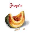 pumpkin slice watercolor juicy yellow fruit vector image vector image