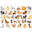 set different pets vector image