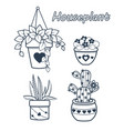 set flowers houseplant vector image vector image