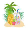 summer and tropical drinks vector image vector image