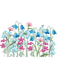 summer floral decorations vector image vector image