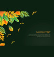 fall colorful leaves background in bright vector image vector image