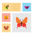 flat butterfly set of butterfly danaus plexippus vector image