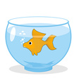Goldfish in an aquarium Symbol of fulfillment of vector image