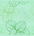 hand drawn seamless pattern with mint leaves vector image vector image