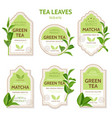realistic tea leaves labels vector image vector image