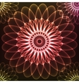Red shining cosmic flower vector image