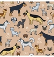Cats and dogs seamless pattern vector image