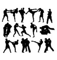judo and thay boxing silhouettes vector image