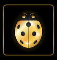 ladybug gold insect small icon golden lady bug vector image vector image