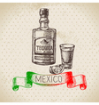 Mexican traditional food background with tequila vector image vector image