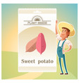 pack of sweet potato seeds vector image vector image