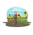 farmer trellising tomato vegetables on farm vector image