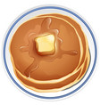 pancake with butter on the plate vector image