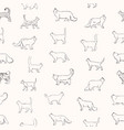 seamless pattern with cats of various breeds hand vector image