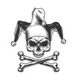 vintage jester skull without jaw vector image vector image