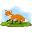cartoon happy fox walking in grass vector image vector image
