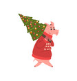 cute pig character dressed in red warm sweater vector image