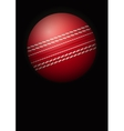 Dark Background of cricket ball vector image vector image
