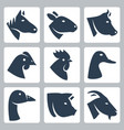 domesticated animals icons set horse sheep cow vector image