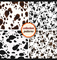 set of seamless pattern design animal print vector image vector image