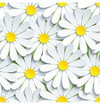 texture seamless pattern with white chamomile vector image
