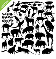 Animals silhouettes vector image