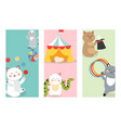 circus cats cards cheerful for vector image vector image