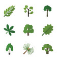 flat icon bio set of maple evergreen leaves and vector image vector image