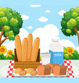 picnic meal in park vector image vector image