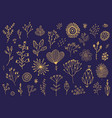set doodle hand drawn flowers florals vector image vector image