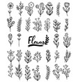 0090 hand drawn flowers doodle vector image vector image