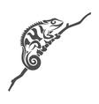 chameleon tribal vector image vector image