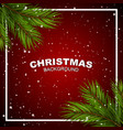 christmas background with pine branchs vector image